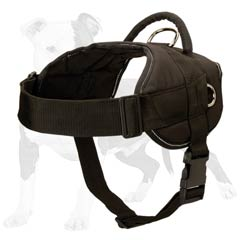 Easy to fit dog harness