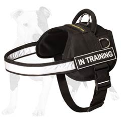 Strong and reliable dog harness