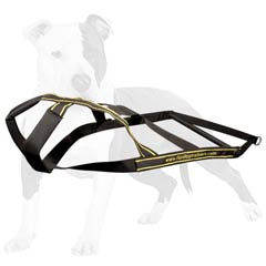 Excellent harness for your dog's activity