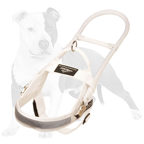 White nylon harness for guide dogs