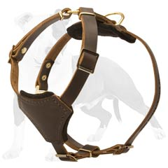 Non-restrictive in movements harness