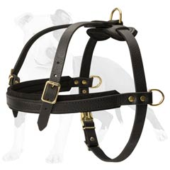 Excellent pulling dog harness