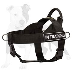 Any weather dog harness