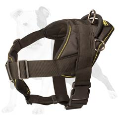 Fantastic nylon harness for your dog