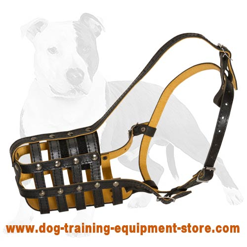 Padded Leather Cage Dog Muzzle for Training, Walking and Daily Wearing