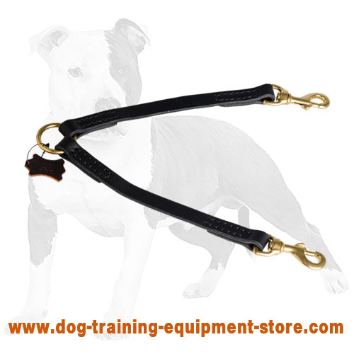 Stitched Leather Coupler Leash for Walking 2 dogs