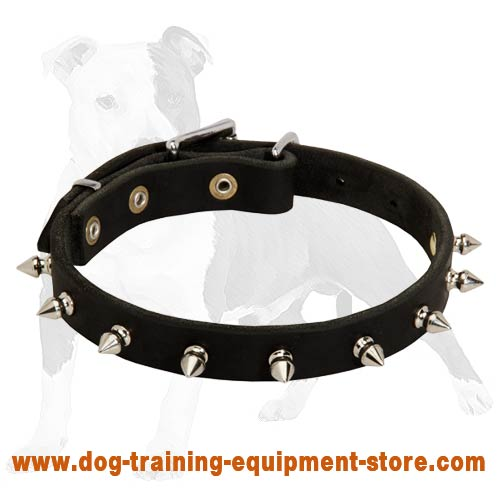 Narrow Spiked Leather Dog Collar for Walking Puppies and Small Breed Canines