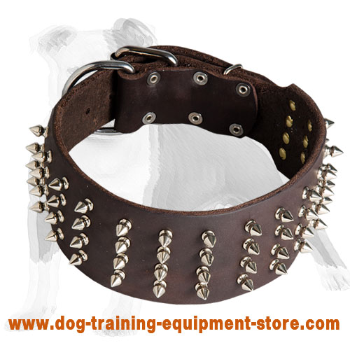 Cool Spiked Leather Dog Collar 3 inch Wide