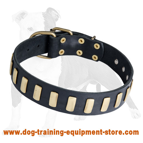 Handmade Leather Dog Collar with Vertical Plates for Walking and Training
