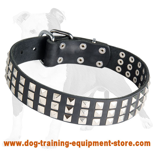 Leather Dog Collar with Silver Pyramids