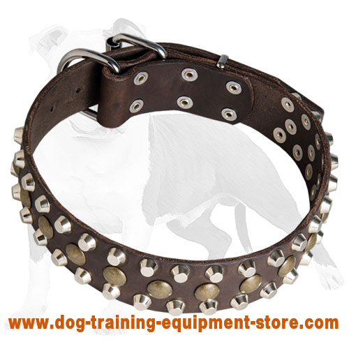 Custom Studded Leather Dog Collar for Training and Walking