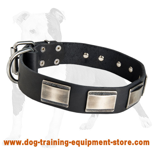 Leather Dog Collar with Figured Plates for Walking and Training