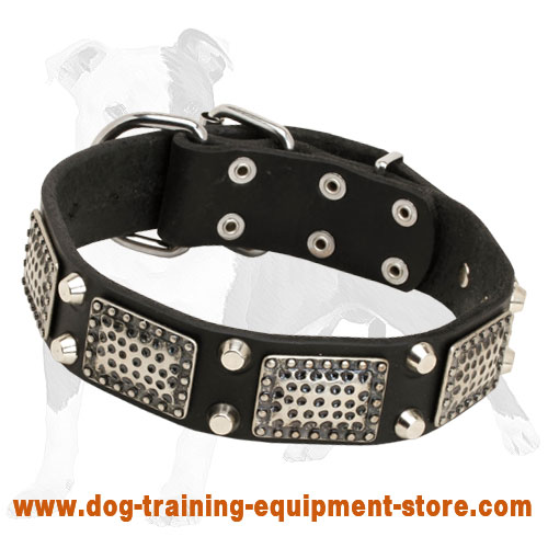 Tremendous Leather Dog Collar with old nickel massive plates and 2 nickel pyramids)