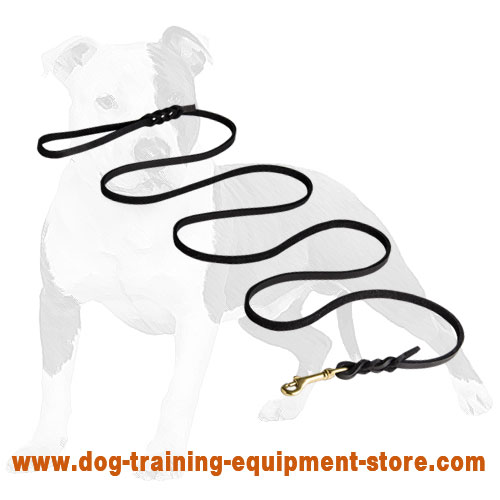 Reliable Show Leather Dog Leash