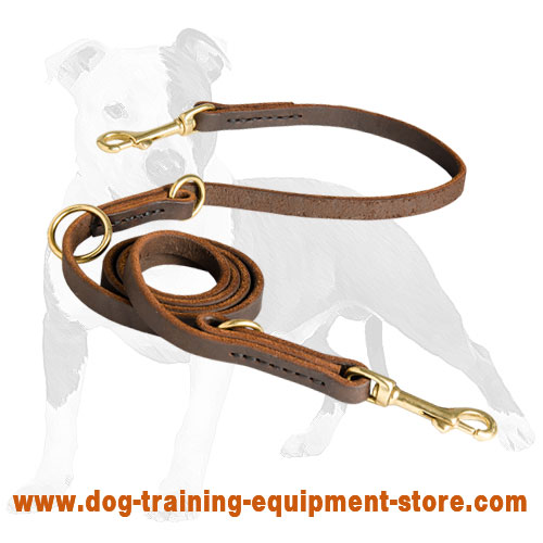 Multimode Leather Dog Lead for Walking and Training