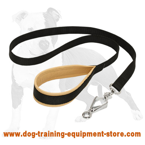Nylon Dog Leash with Padded Handle and Scissor Type Snap Hook