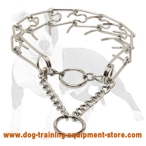 Training Chrome Plated Pinch Dog Collar 1/10 inch (2.3 mm) prong's diameter