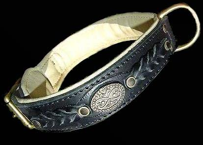 Leather dog collar for Training ,bullterrier,amstaff,rottweiler and more breeds