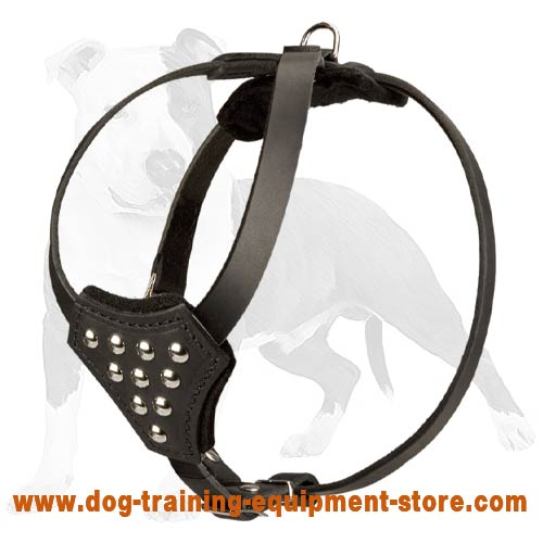 Fashion Leather Dog Harness for Puppy or Small Breeds Walking and Training