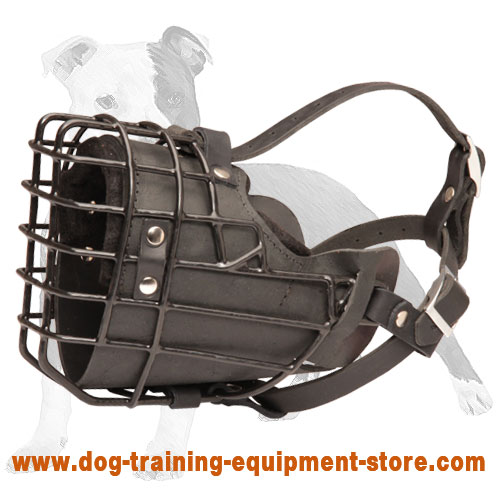 Rubber Coated Wire Cage Muzzle with Leather Padding for Winter Walking