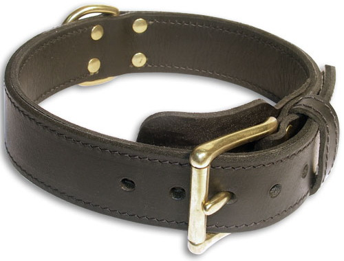 Practical easy handling leather dog collar
