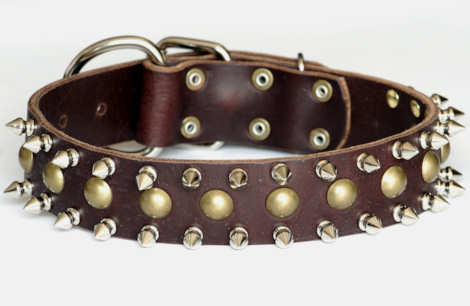 leather spiked and studded  dog collar