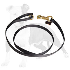 2 ply nylon dog leash for tracking