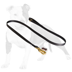 Adjustable nylon dog leash for tracking