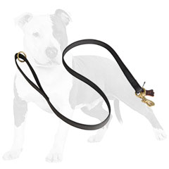 Reliable nylon dog leash