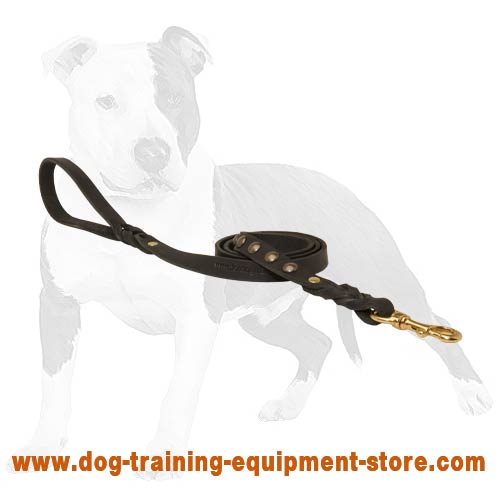 Matching for tracking activity leather dog leash
