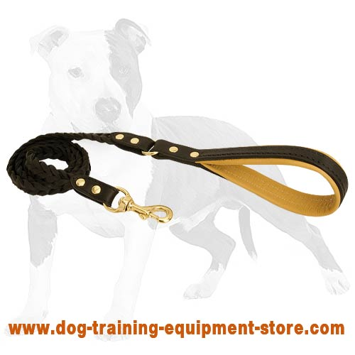 Reliable and convenient lead for better control of your dog