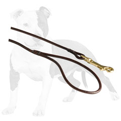 Round leather leash with sturdy snap hook