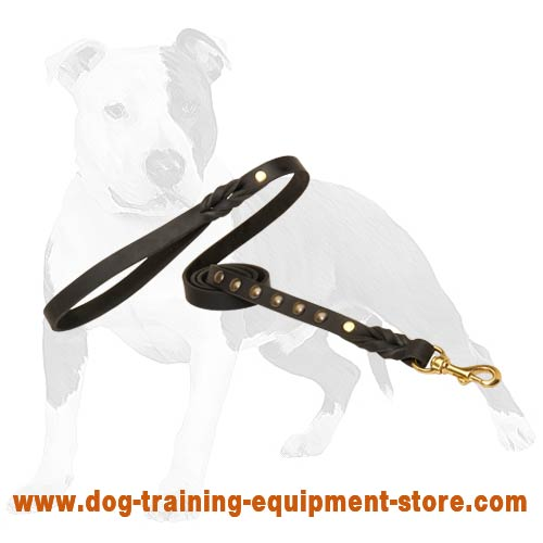 Canine lead with anti-rubbing handle will turn walking into pleasure