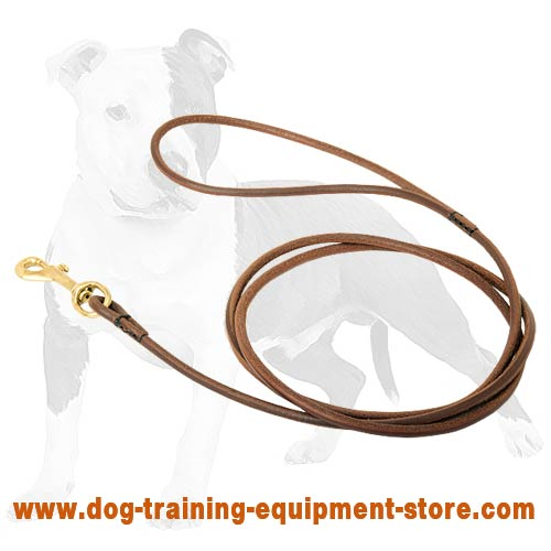 Your best assistant in leading and guiding your canine on the dog ring