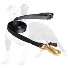 Non-stretching nylon dog leash
