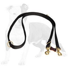 All weather police nylon dog leash