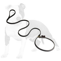 Combo leather dog leash with brass hardware