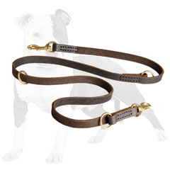 Walking and Training Leather Dog Leash