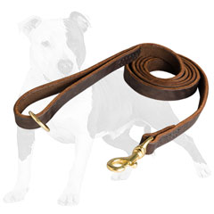 Leather Leash with Floating Ring