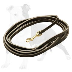 Strong leather dog leash