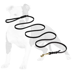 Leather leash for dog walking