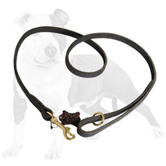 Durable walking leather dog leash