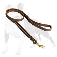 Everyday leather dog leash with strong hardware