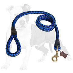 Nylon dog leash with rust-proof snap hook