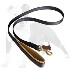 Comfortable nylon dog leash