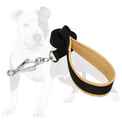 Nylon Dog Leash with Comfy Handle