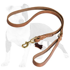 Professional leather dog leash