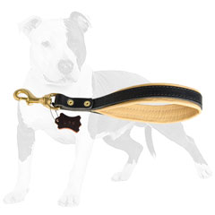 Comfortable Leather Short Leash
