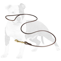 Flexible leather leash for dog show