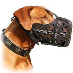 Excellent hand-painted leather muzzle